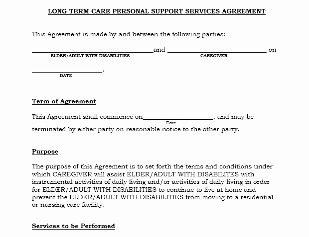 Service Agreement Template Word Lovely Professional Services Agreement Templates 24 Free