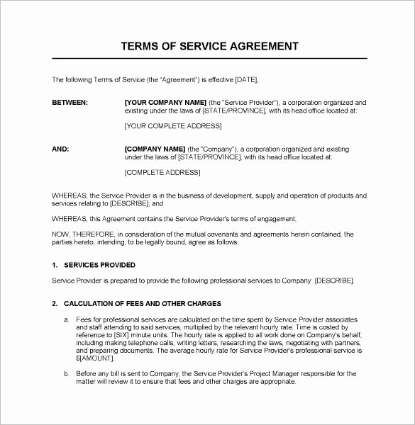 Service Contract Template Word Inspirational Service Contract Template