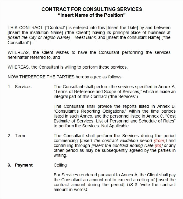 Service Contract Template Word Luxury Service Contract Template 9 Free Pdf Doc Download