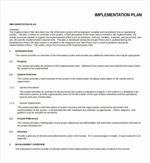 Simple Implementation Plan Template Awesome 12 Implementation Plan Templates Pdf Word Google Docs