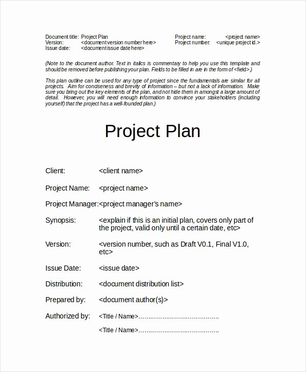 Simple Project Plan Template Word Beautiful Project Plan Template 12 Free Word Psd Pdf Documents