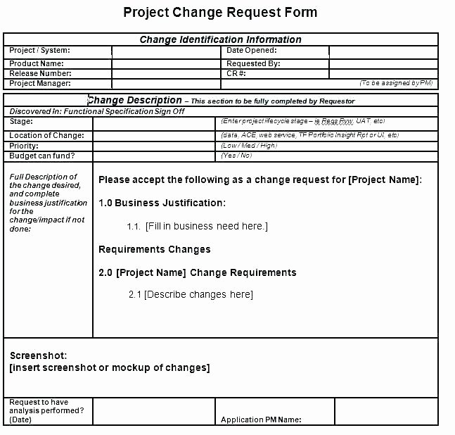 Simple Project Scope Template New Simple Project Scope Template
