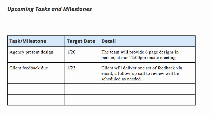 Simple Project Status Report Template Awesome Project Status Report Template and Status Report Examples