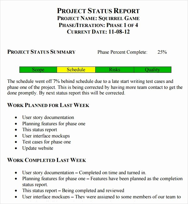 Simple Project Status Report Template Best Of Free 14 Sample Useful Project Status Report Templates In