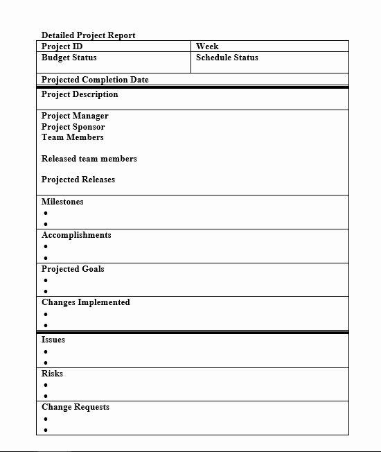 Simple Project Status Report Template Elegant Status Report Template 27 Examples You Can Download Free