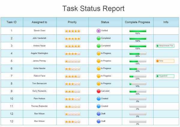 Simple Project Status Report Template New Example Of Project Charts