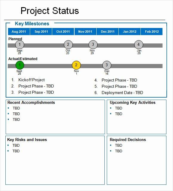 Simple Project Status Report Template New Sample Status Report 10 Example format