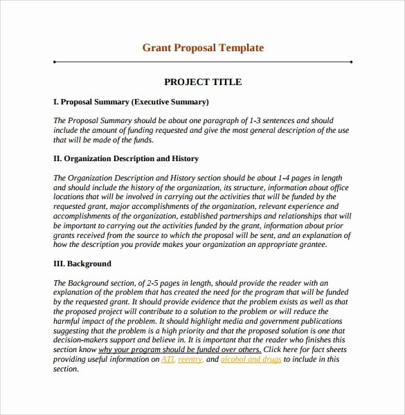 Simple Rfp Template Word Elegant 11 Sample Grant Proposals Word Pdf Pages