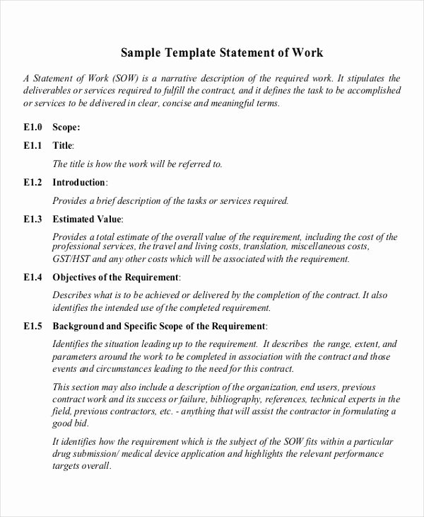 Simple Statement Of Work Template Elegant Free 20 Statement Of Work Examples & Samples In Pdf