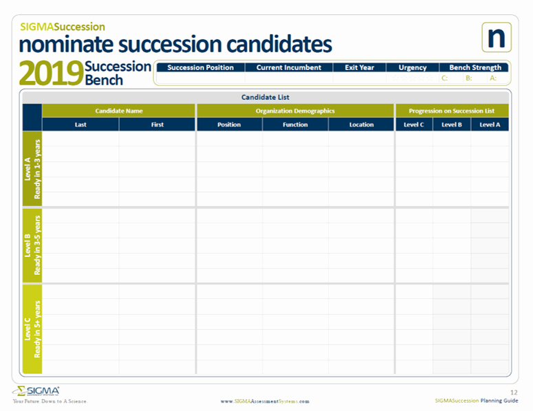 Simple Succession Plan Template Awesome Succession Planning Template