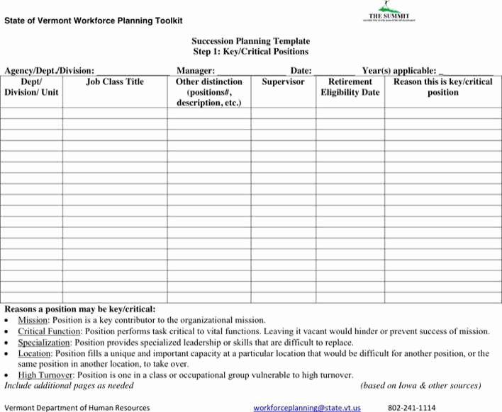 Simple Succession Plan Template Luxury Download Succession Planning form for Free Tidytemplates