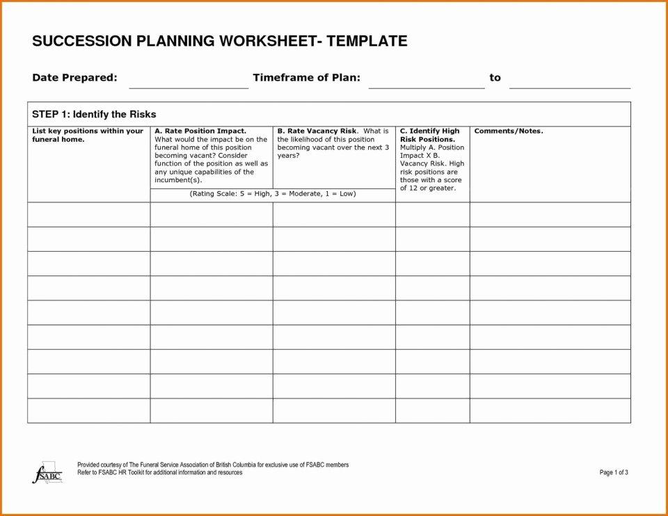 Simple Succession Plan Template Unique 008 Plan Template Sample Succession Tinypetition