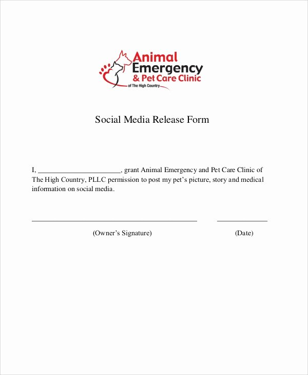 Social Media Release form Template Elegant 51 Sample Release forms