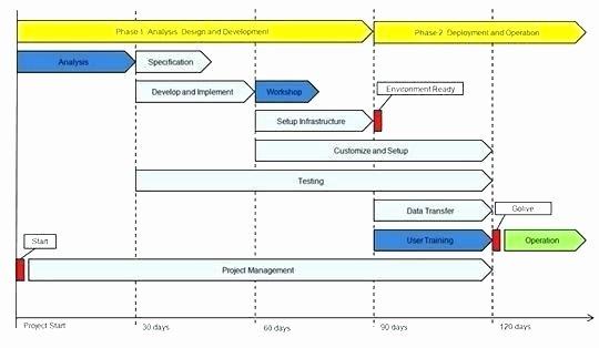 Software Implementation Plan Template Unique Rollout Strategy Template