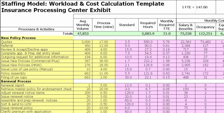 Staffing Plan Template Excel Awesome Full Time Equivalent Exhibits