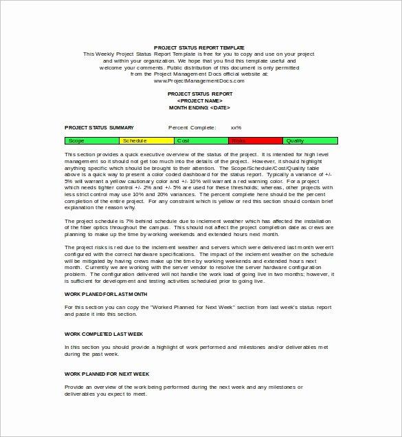 Status Report Template Word Elegant Free 16 Sample Weekly Status Report Templates In Pdf
