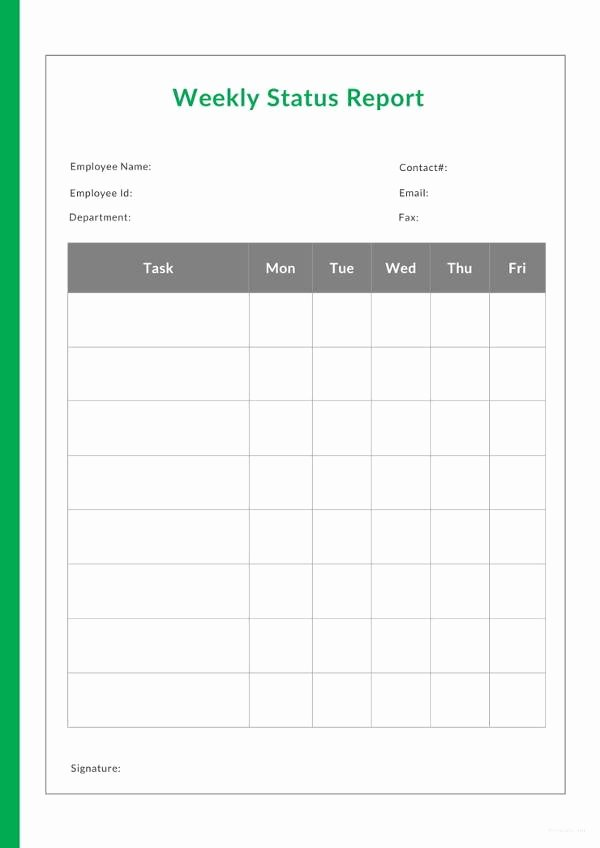 Status Report Template Word Lovely 18 Sample Weekly Status Report Templates – Pdf Word