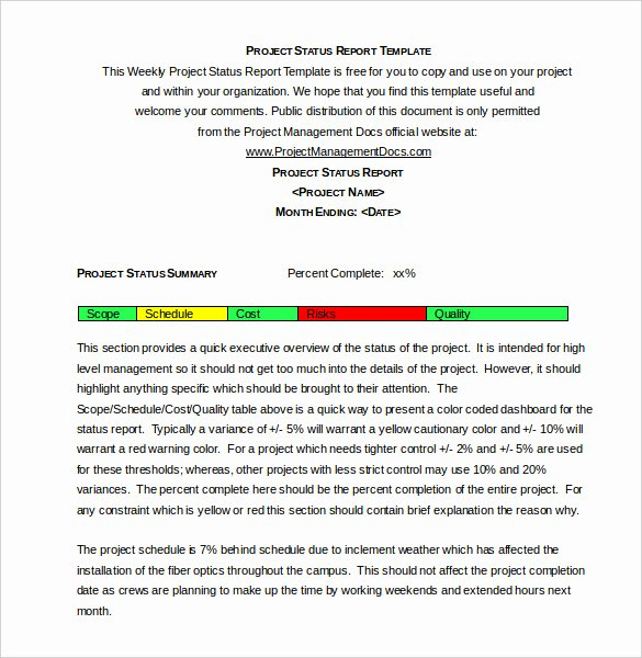 Status Report Template Word Lovely Weekly Status Report Templates 30 Free Documents