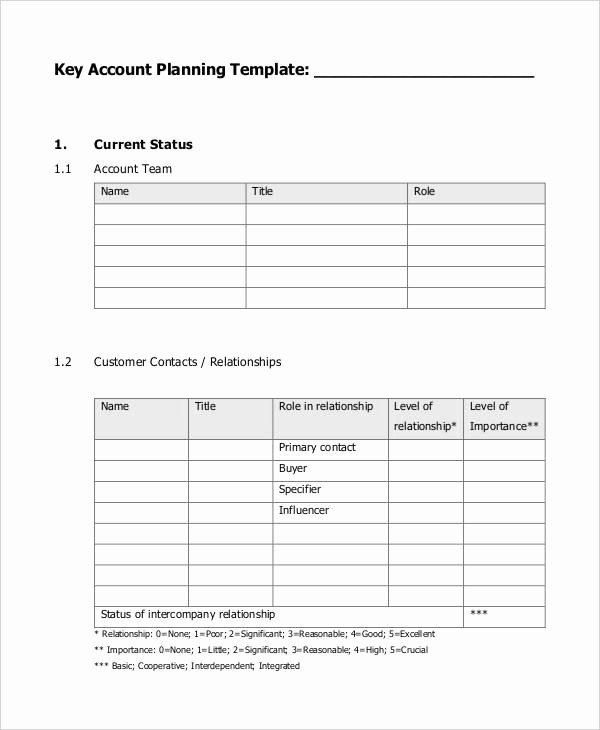 Strategic Account Plan Template Beautiful 7 Strategic Account Plan Templates Free Sample Example