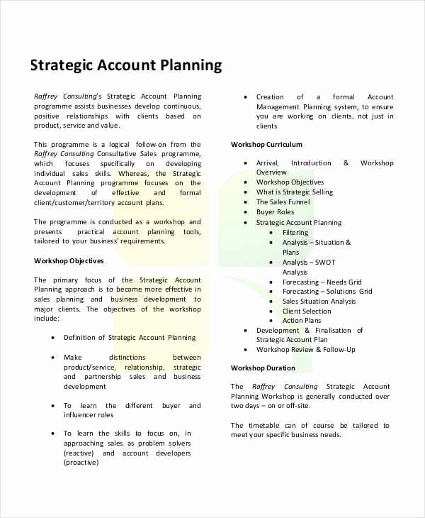 Strategic Account Plan Template Elegant 26 Strategic Plan Samples & Templates In Pdf Docs Word