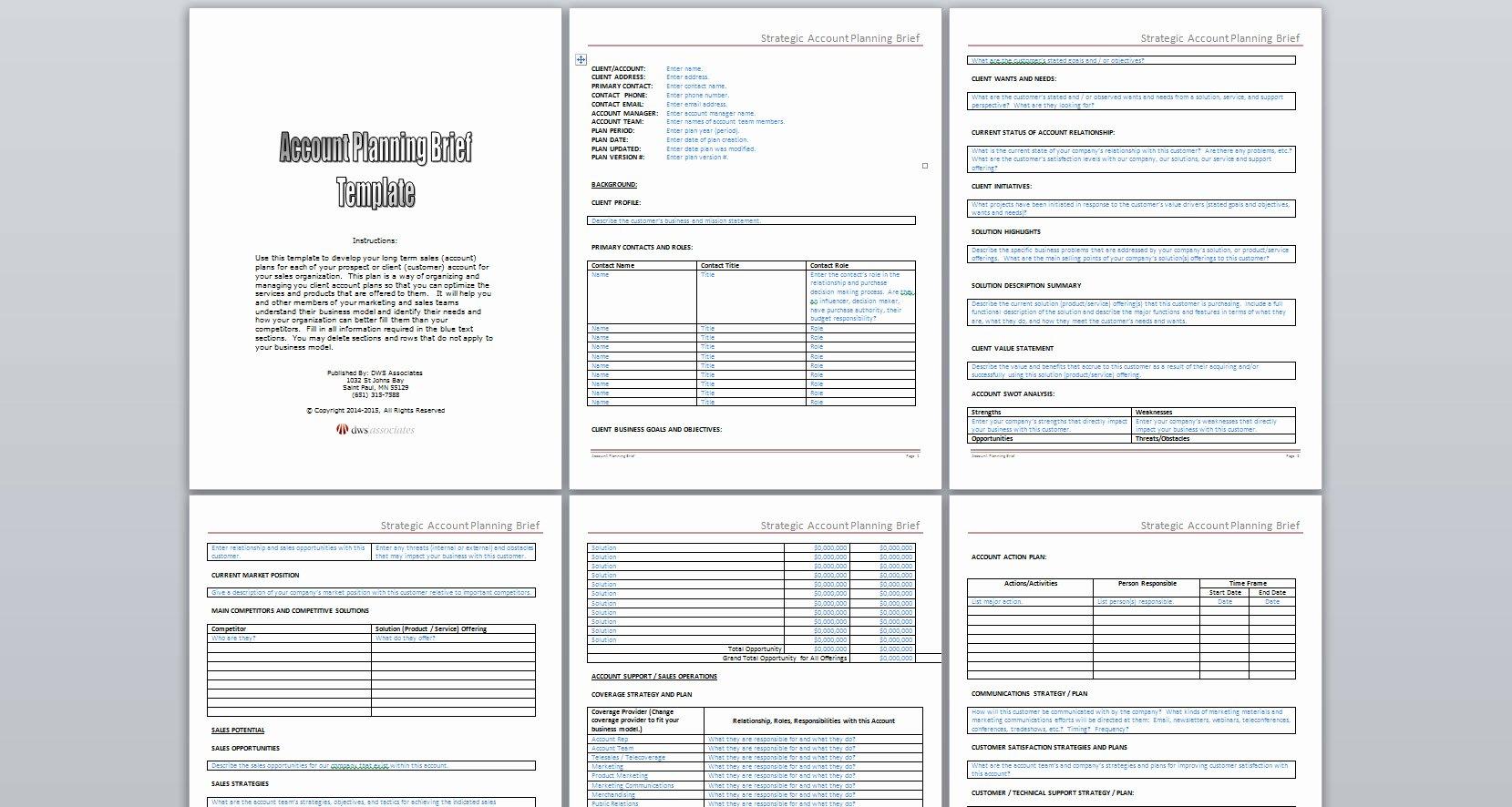 Strategic Account Plan Template Lovely Dws associates Strategic Account Planning Brief Template