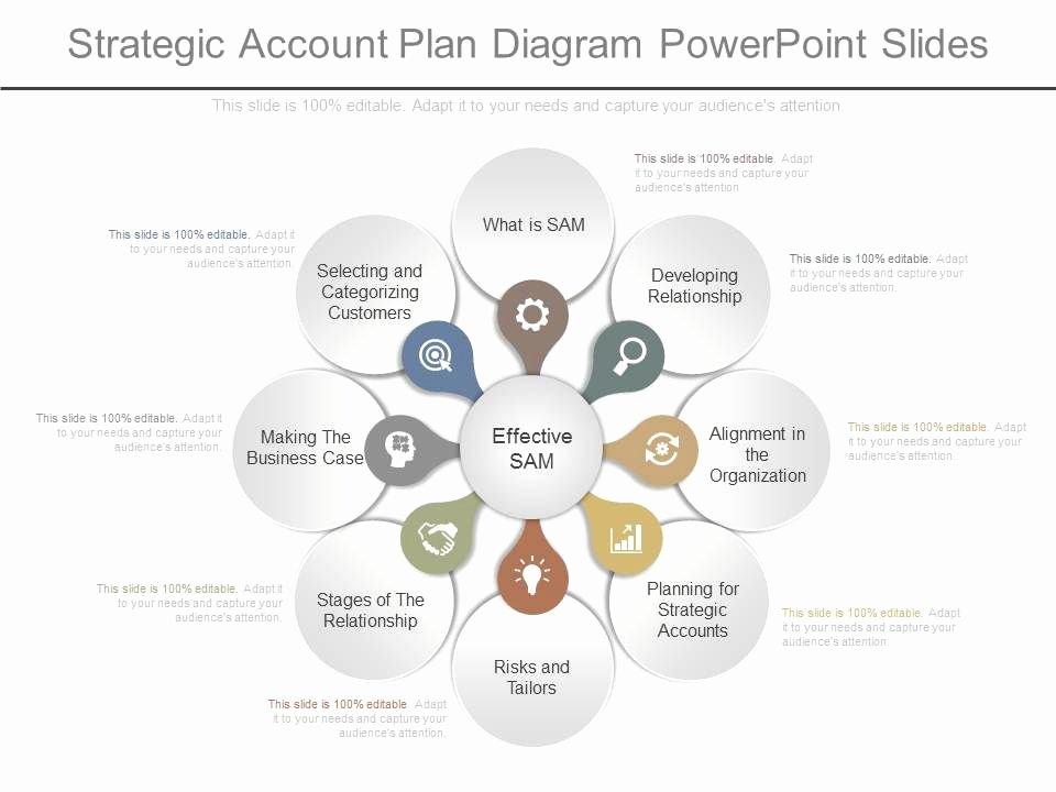 Strategic Account Plan Template Luxury App Strategic Account Plan Diagram Powerpoint Slides
