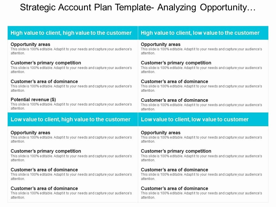 Strategic Account Plan Template New Strategic Account Plan Template Analyzing Opportunity