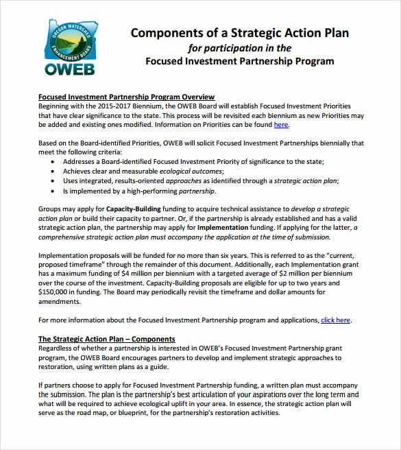 Strategic Action Plan Template Beautiful Sample Strategic Action Plan 10 Documents In Pdf Word