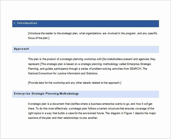 Strategic Plan Template Word Lovely 36 Strategic Plan Templates Pdf Docs