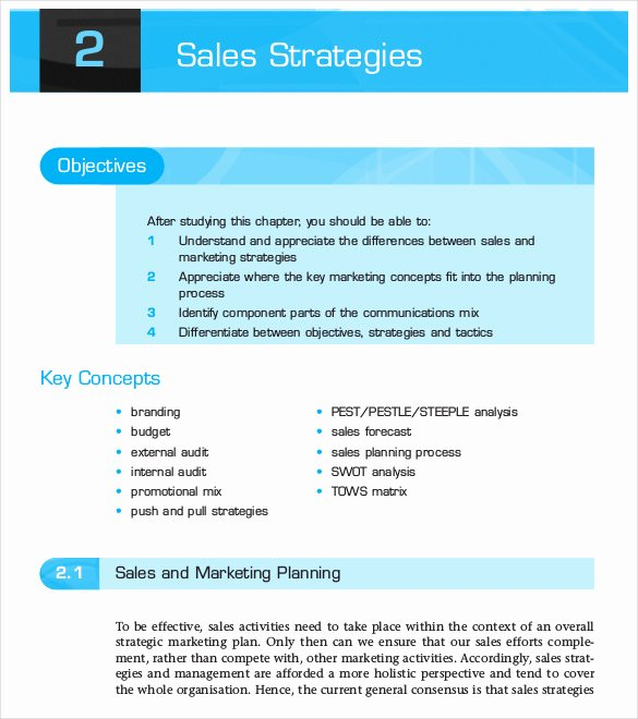 Strategic Sales Plan Template Elegant 12 Sales Strategy Templates Doc Pdf