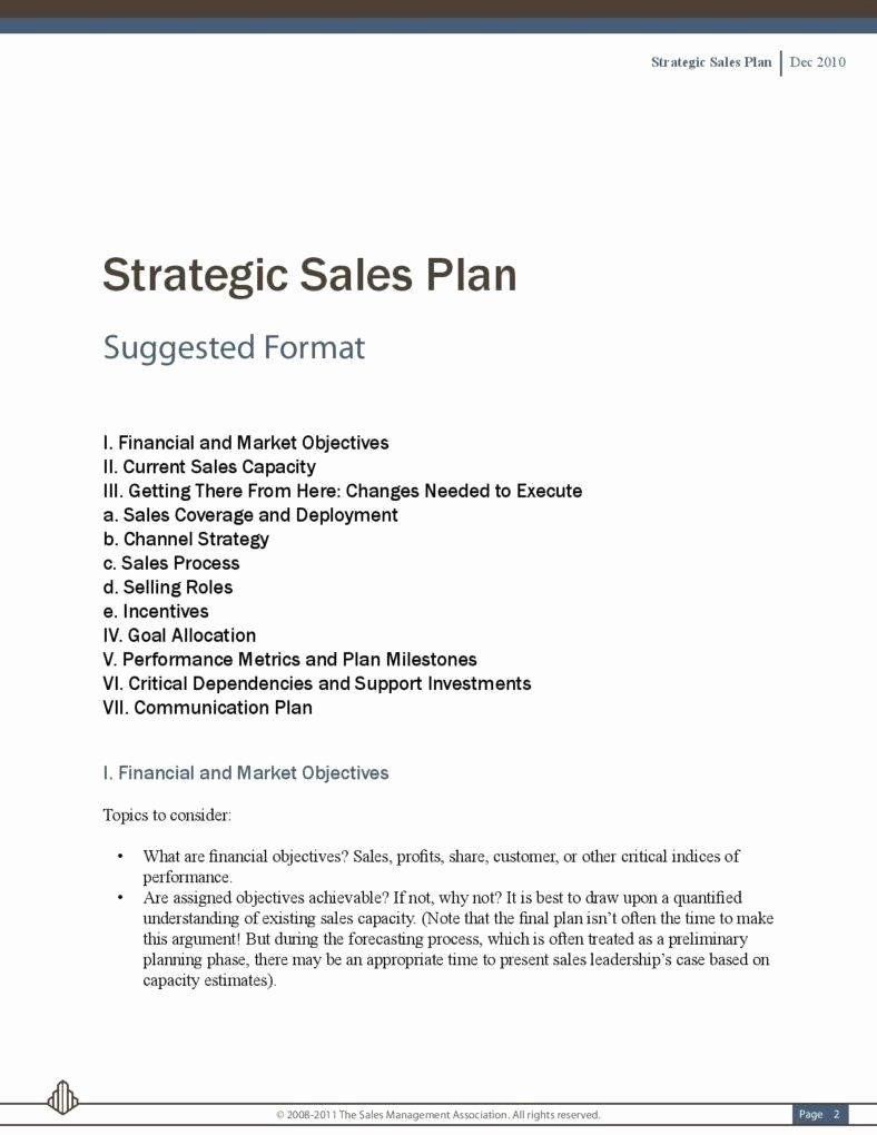 Strategic Sales Plan Template Lovely 5 Sales Strategic Plans