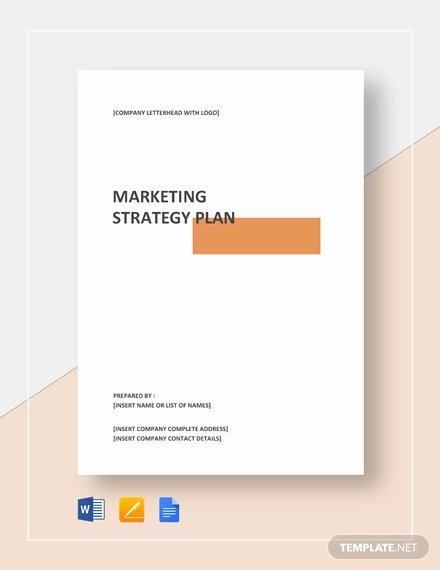 Strategy Plan Template Word Fresh Marketing Strategy Template 13 Free Pdf Word format