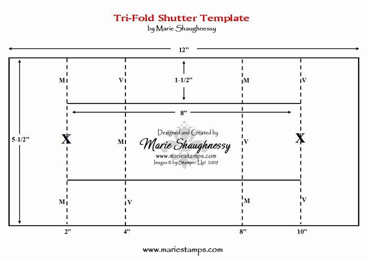 Tri Fold Card Templates Luxury Stamping Inspiration Fun & Fancy Folds 1 Tri Fold