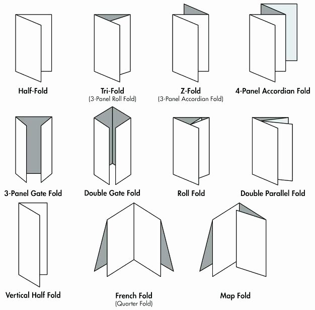 Tri Fold Table Tent Template Unique How to Make A Table Tent In Publisher