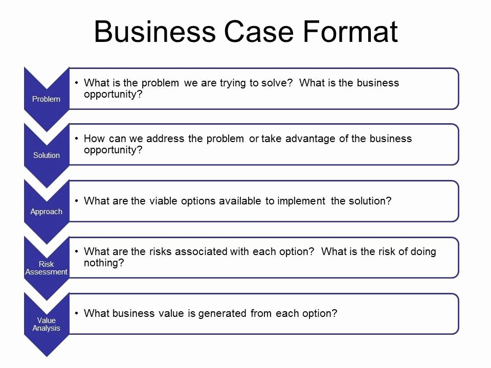 Use Case Template Excel Luxury Business Case Template In Word