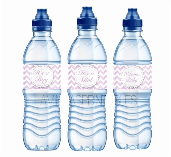 Water Bottle Labels Template Beautiful 26 Label Templates Free Psd Ai Eps format Download