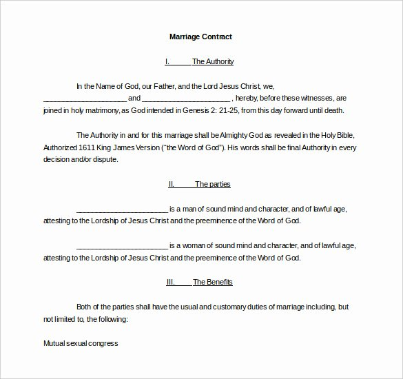 Wedding Photography Contract Template Word Lovely Wedding Contract Template – 13 Word Pdf Google Docs