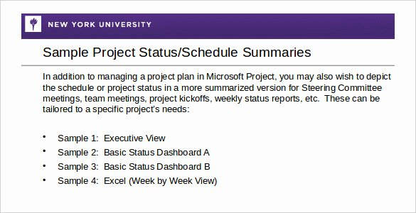 Weekly Activity Report Template Excel Elegant Nyu Powerpoint Template Rebocfo