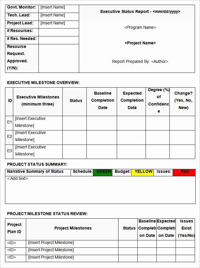 Weekly Status Report Template Word Beautiful Status Report Template 13 Free Word Documents Download