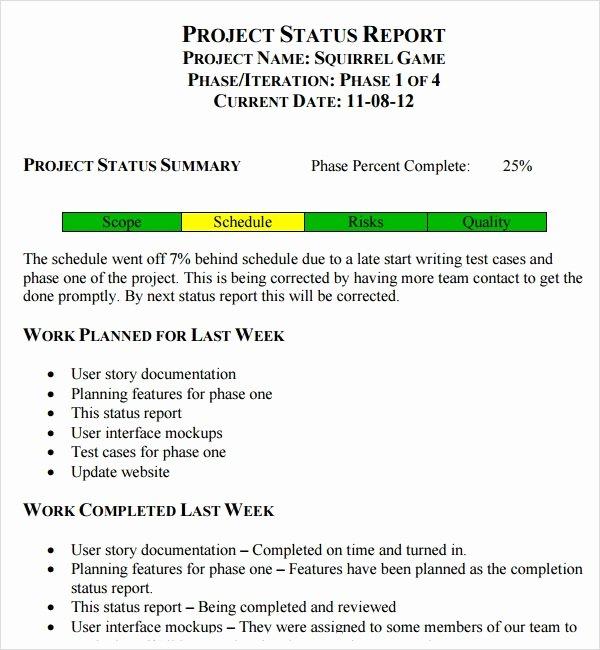 Weekly Status Report Template Word Best Of Free 14 Sample Useful Project Status Report Templates In
