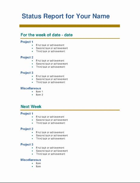 Weekly Status Report Template Word Elegant Employee Weekly Status Report