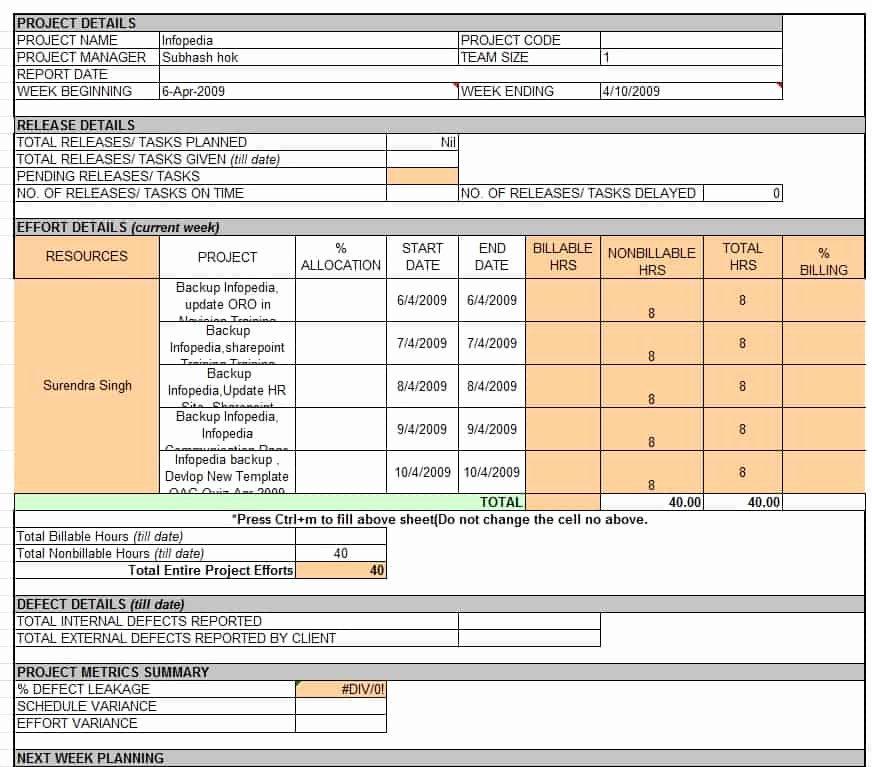 Weekly Status Report Template Word Inspirational Weekly Status Report Template Professional Business