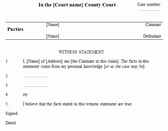 Witness Statement Template Word Awesome 6 Witness Statement Templates