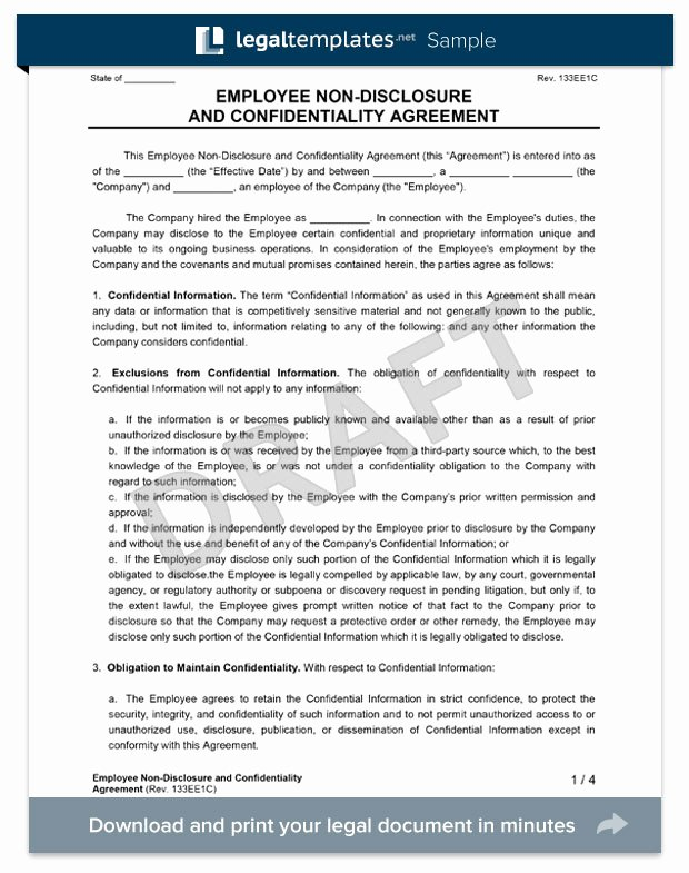 Word Employee Confidentiality Agreement Templates Unique Employee Non Disclosure Agreement Create An Nda