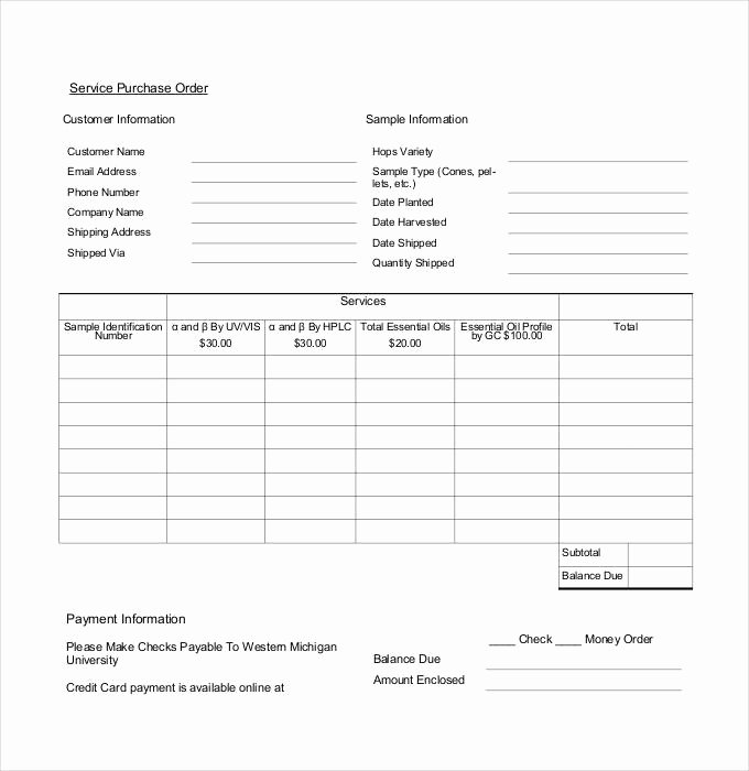 Word Purchase order Template Inspirational Purchase order Template