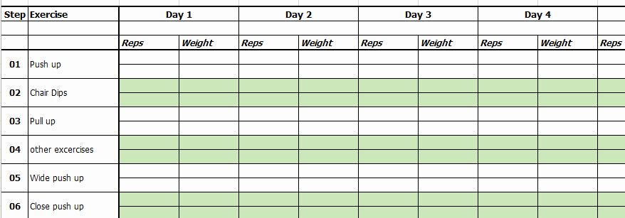Workout Plan Template Excel Elegant Excel Template Exercise and Workout Tracking Template by