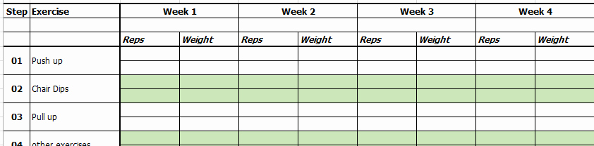 Workout Plan Template Excel Unique Excel Template Exercise and Workout Tracking Template by