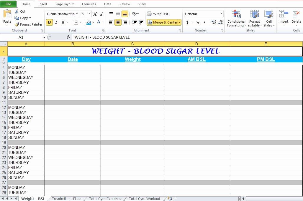 Workout Plan Template Excel Unique Workout Log Template Excel