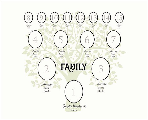 4 Generation Family Tree Templates Awesome 4 Generation Family Tree Template – 12 Free Sample
