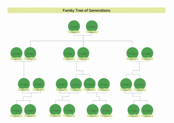 4 Generation Family Tree Templates Beautiful Simple Family Tree Template 27 Free Word Excel Pdf